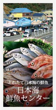 とれたて日本海の鮮魚 日本海鮮魚センター
