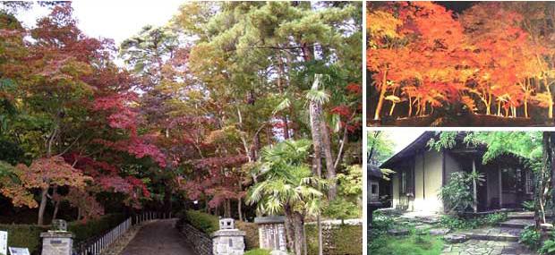 松雲山荘のライトアップ