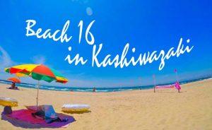 柏崎の海岸には16のビーチが!