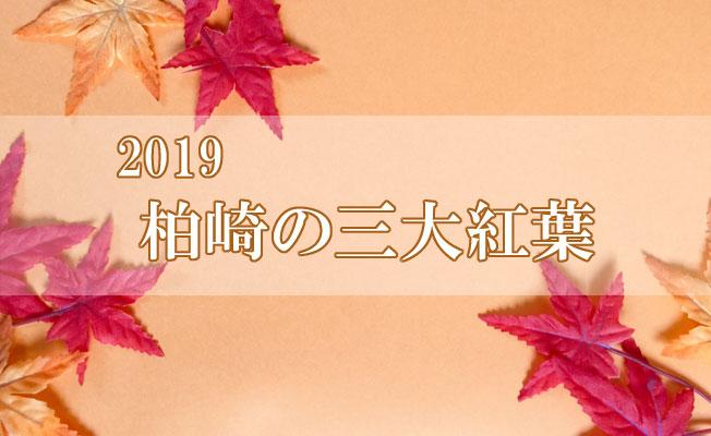 特集 2019柏崎三大紅葉