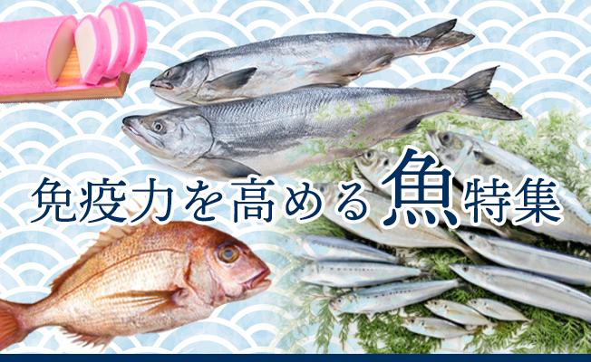 免疫力を高める魚特集