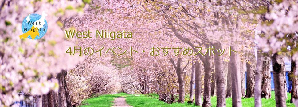 West Niigata 4月のイベント情報・おすすめスポット