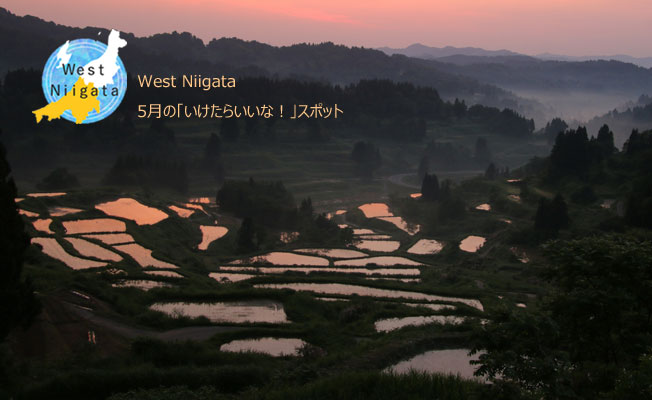 West Niigata 5月の「いけたらいいな!」スポット